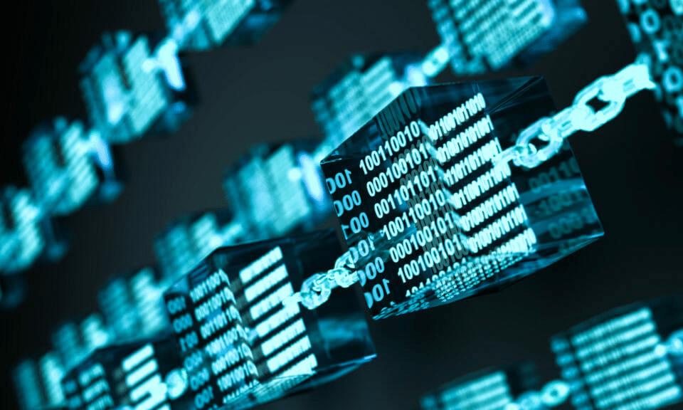 The Blockchain</br>Report 2020